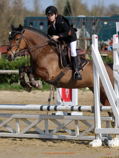 Le saut d'obstacles