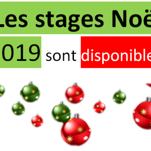 annonce-stage-noel-image